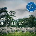 ortovox tasmania contest
