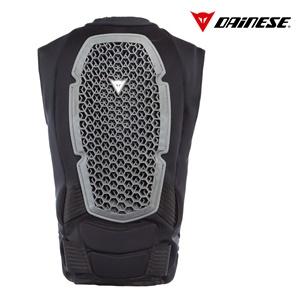 dainese pro armor