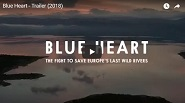 blue heart patagonia